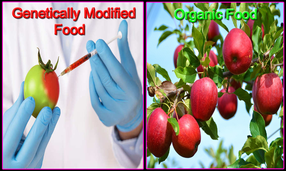 Organic Food Vs Genetically Modified Food