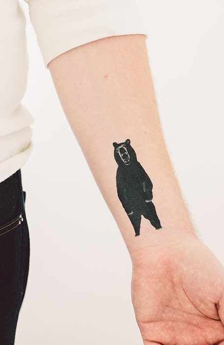 Tato Beruang