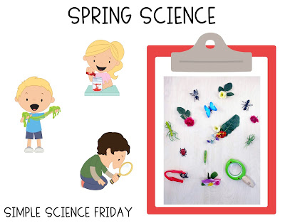 https://www.firstgradebuddies.com/2019/04/simple-science-spring-science.html