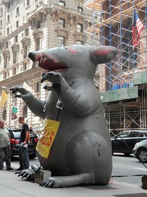 rat géant 5ème avenue