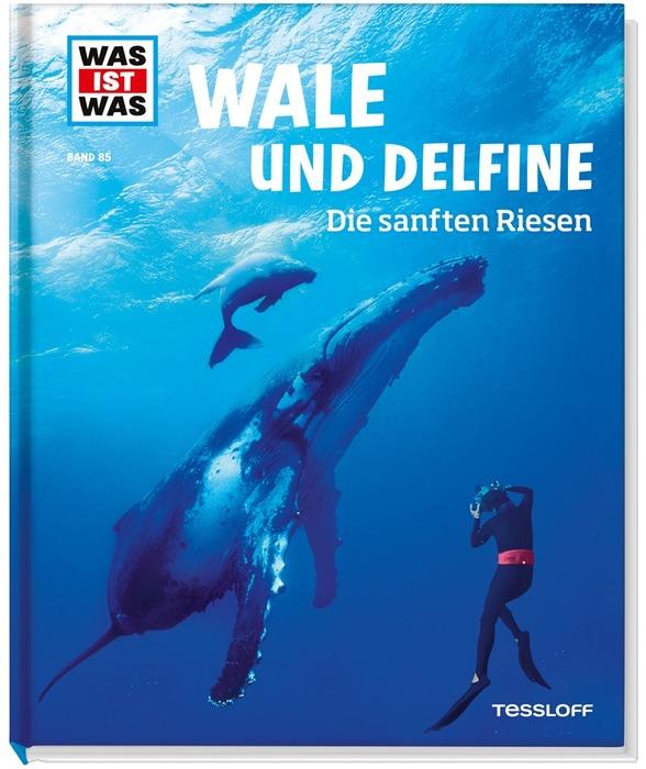Wale: Küstenkidsunterwegs: Die Küstenkids Im Bücherboot
