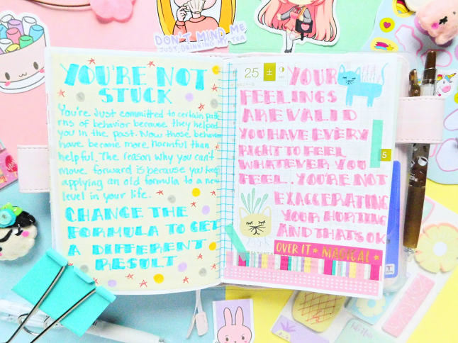 Kawaii Hobonichi Flip Through