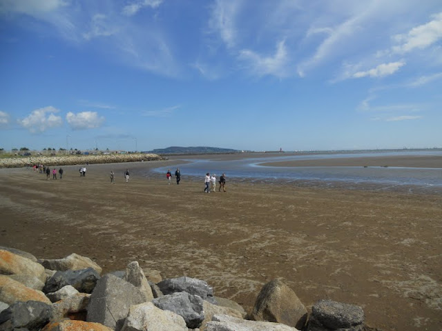 Walkers cutting across the sand at low tide near Sandymount Strand on the hike to Poolbeg Lighthouse
