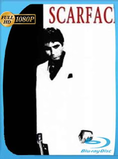 Scarface 1983 HD [1080p] Latino [Mega] dizonHD