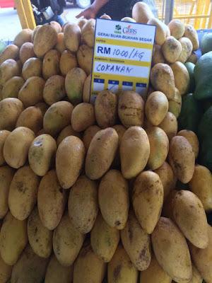 Harga Pasaran Buah Mangga Chokanan