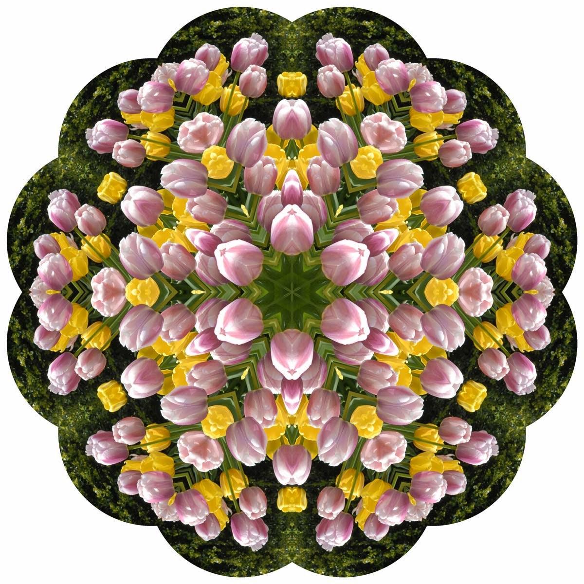 Kaleidoscope Photo Art Tulips by Jeanne Selep