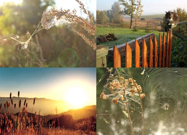 Analiza kolorystyczna: Jesień na przykładzie Anny