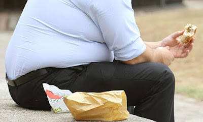 Obesidad - SupleNat