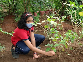 Plant A Tree Challenge - Photogallery