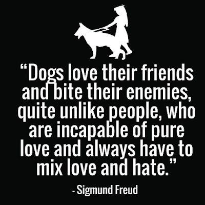Dogs love their friends and bite their enemies,