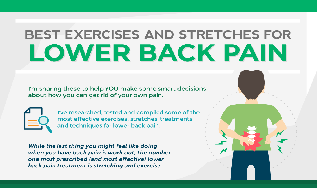 Best Exercises And Stretches For Lower Back #infographic