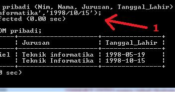 3 cara memasukkan data baru kedalam tabel database mysql dengan cmd - Zikri Tekno