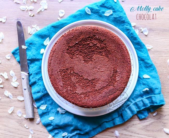 gateau chocolat pour layer cake