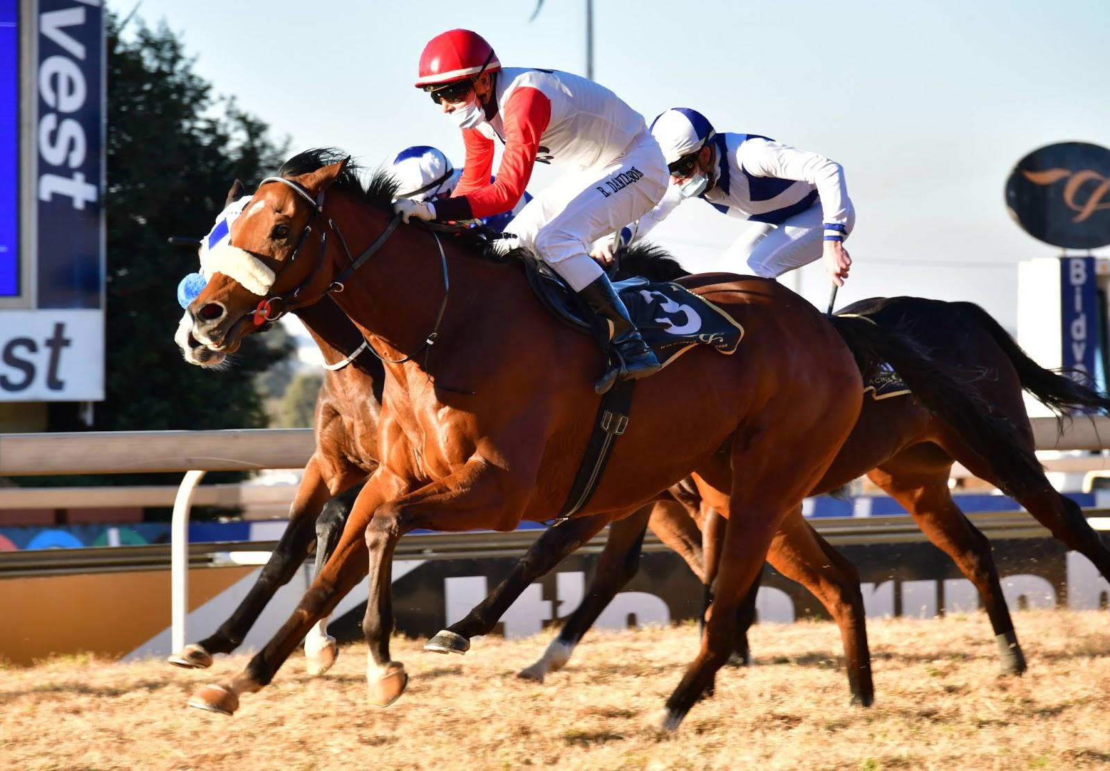 Vodacom Durban July 2020 Horse Profile - Divine Odyssey