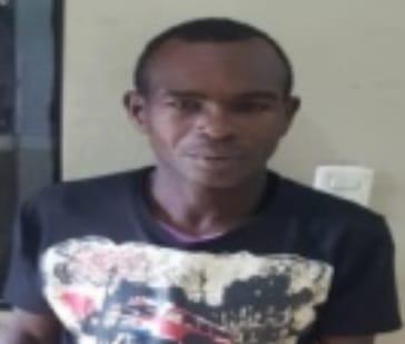 PN apresa en comunidad de Barahona hombre que mató a machetazos 19 animales domésticos