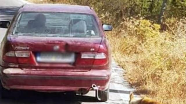 Κτηνωδία στην Κρήτη: Έδεσε σκύλο από το λαιμό και τον τραβούσε με το αμάξι στον δρόμο
