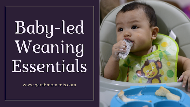 Baby-led Weaning Esssentials