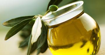 Folhas de oliveira tem um potencial agente redutor de colesterol ?