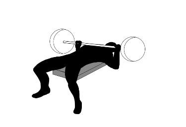 10 Bodybuilding Exercises :  Part 1