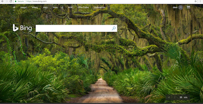 Cara submit BLOG ke Bing webmaster
