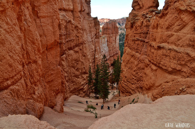 Wall Street Navajo/Queens Garden Loop Trail, Bryce Canyon National Park