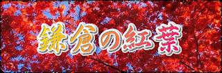 鎌倉:紅葉の名所