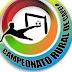 Comissão organizadora anuncia o fim do Campeonato Rural de Capela