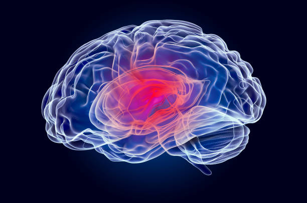 Toxic brain damage occurs when the brain is deprived of oxygen. It is a serious condition that can lead to serious disability, coma, or even death.
