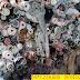 Thu mua vải cây giá cao tại Bình Dương