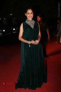 Actress Pragya Jaiswal Stills in Green Long Dress at Gemini TV Puraskaralu 2016 Event  0105.JPG