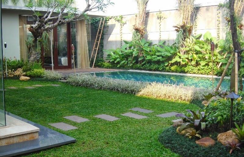 Tukang Taman Minimalis Dibogor 0812 1989 6383 Anggun