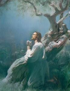 La Gloria de Dios, Adoración, Juan Carlos Parra,