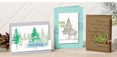Stampin' Up! In the Pines Projects ~ Aug-Dec 2020 Mini Catalog