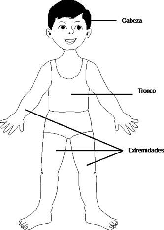 Cuentosdedoncococom Conociendo Las Partes Del Cuerpo Humano