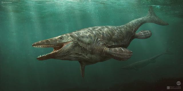 loài bò sát biến Mosasaurus