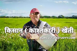 व्यक्तिगत खेती या किसान (काश्तकारी) खेती क्या है इसके लाभ एवं उपयोगिता, peasant farming in hindi, व्यक्तिगत खेती की परिभाषा, किसानी-खेती, खेती के लाभ,