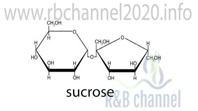 السكروز Sucrose