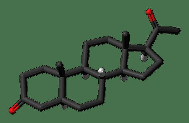 الهرمونات الأساسيات
