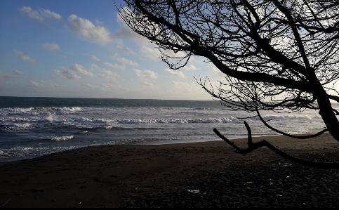 Wisata Pantai Goa Cemara Bantul Jogja