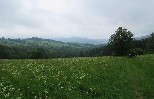 Wzgórza Rymanowskie.