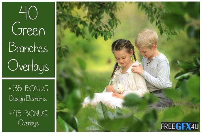 120 Green Tree Branches Overlays