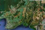 LAPAN Ungkap Penyebab Banjir Kalsel karena 139 Ribu Hektar Hutan Hilang