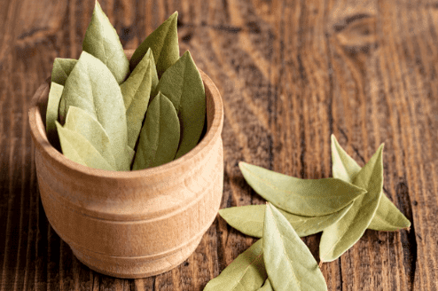 The benefits of bay leaf .. For joints