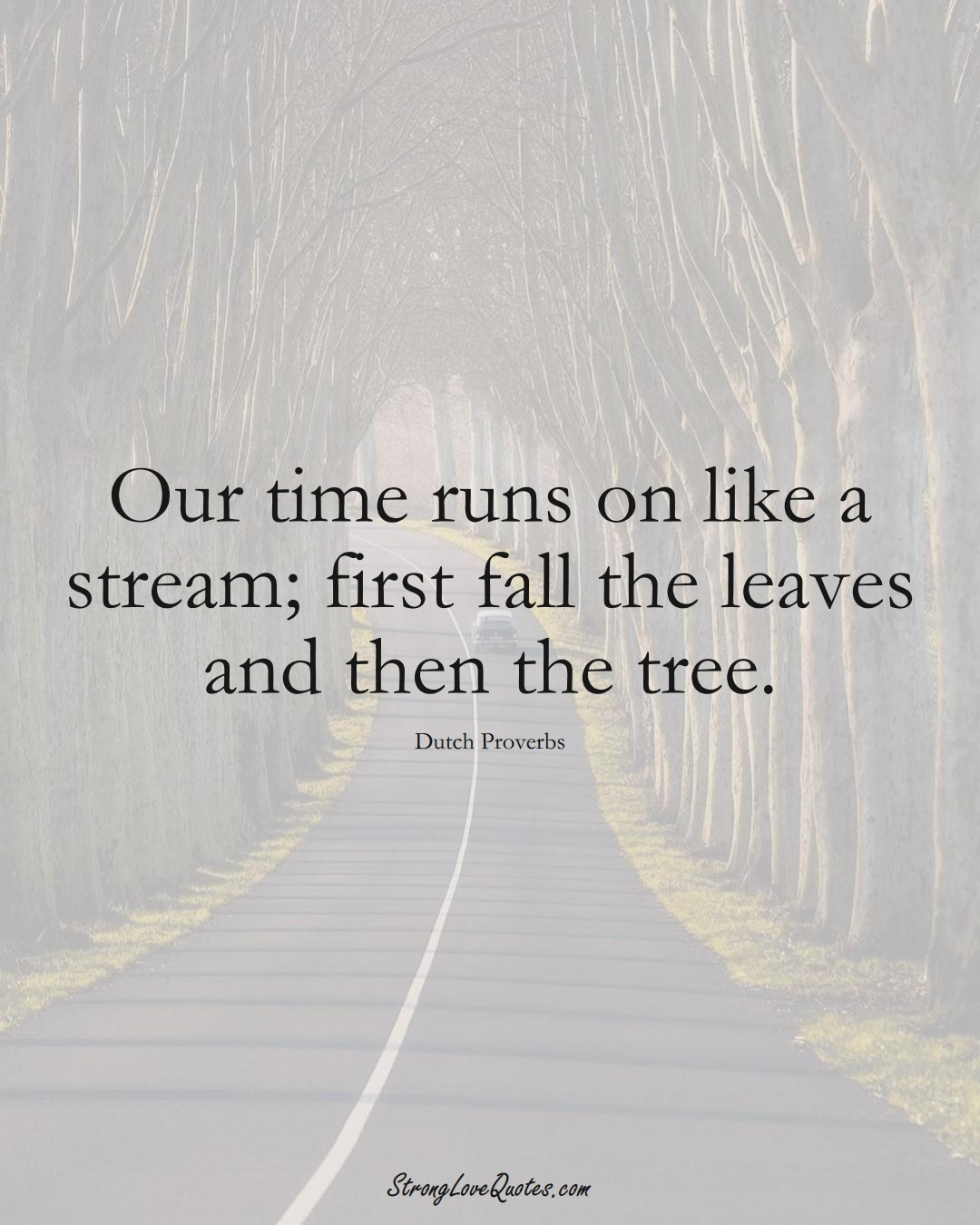 Our time runs on like a stream; first fall the leaves and then the tree. (Dutch Sayings);  #EuropeanSayings
