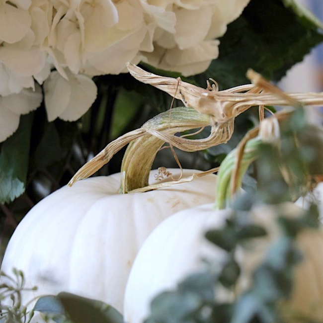 Welcome Fall decorating ideas with twisty stem white pumpkins