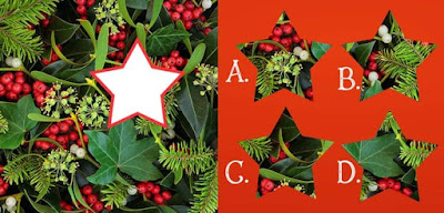 Figure: Beautiful mistletoe – can you complete this festive image?