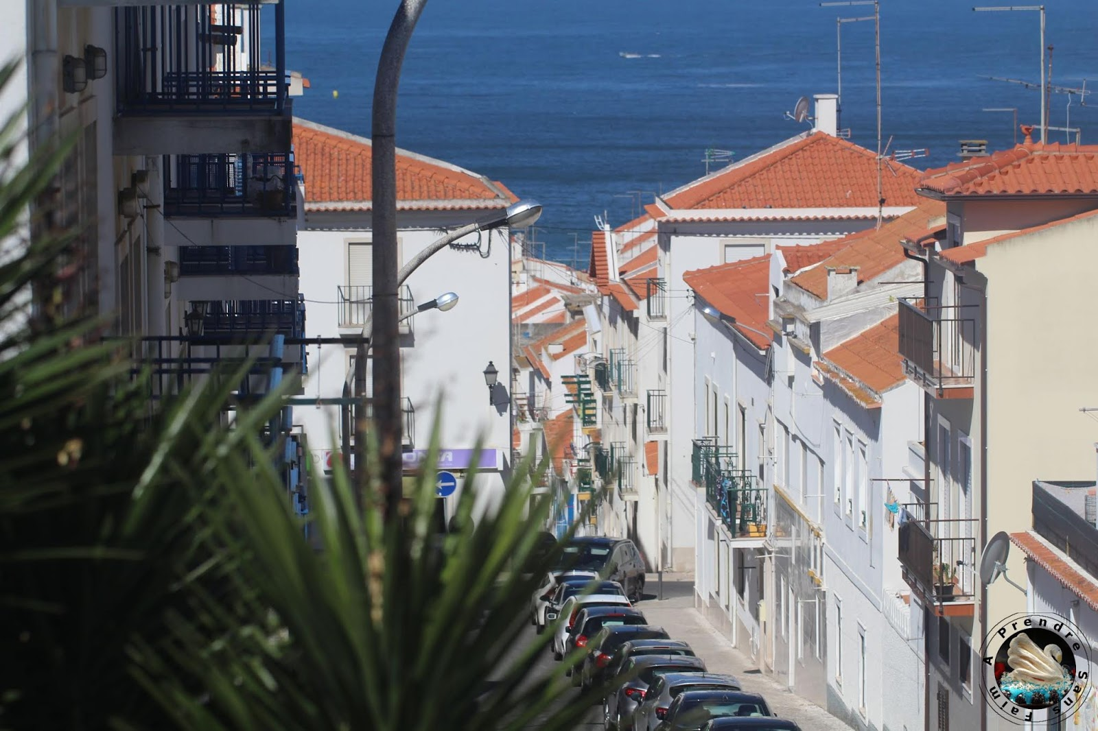 """Recettes """"Best of"""" vacances d'été au Portugal"""