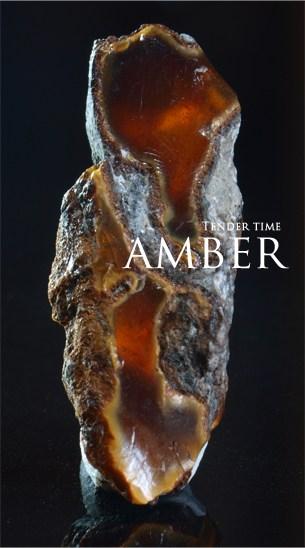 アンバー 琥珀 岩手県久慈市 Amber