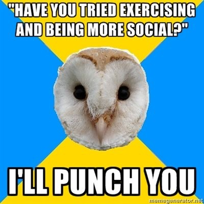 bipolar owl funny meme about being more social