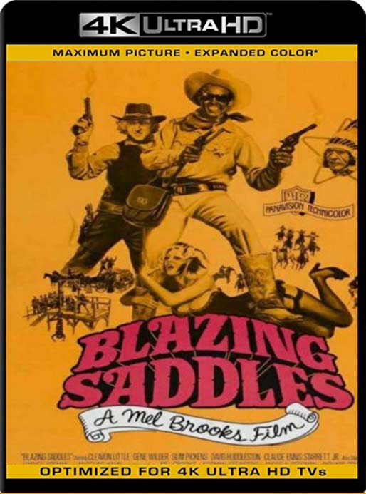 Locuras en el Oeste (Blazing Saddles) (1974) 4K 2160p UHD [HDR] Latino [GoogleDrive]